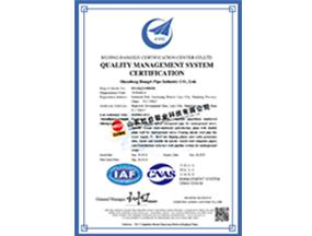 ISO9001zheng书(英文版)